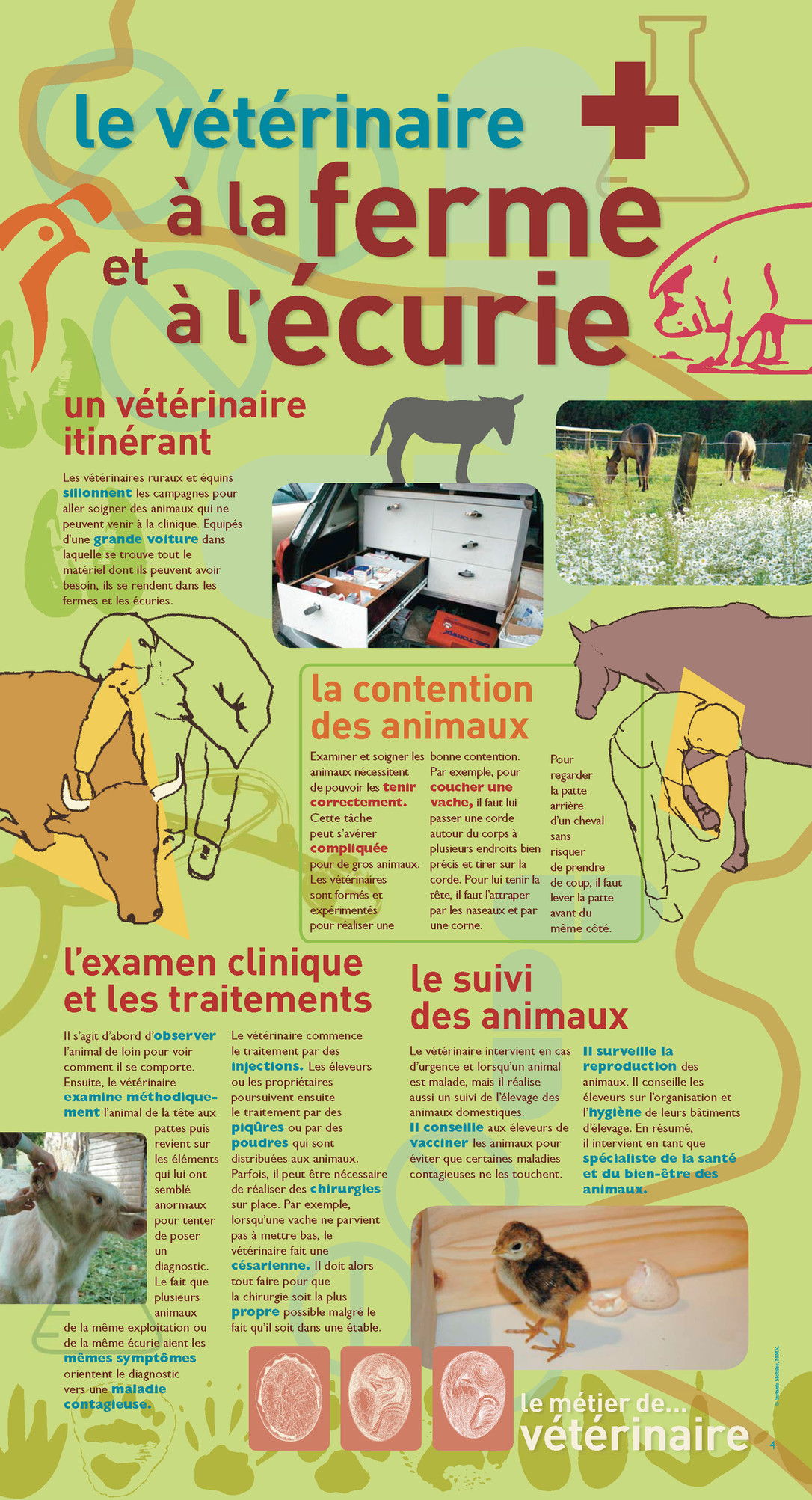 P4 Expo Veterinaire.jpg
