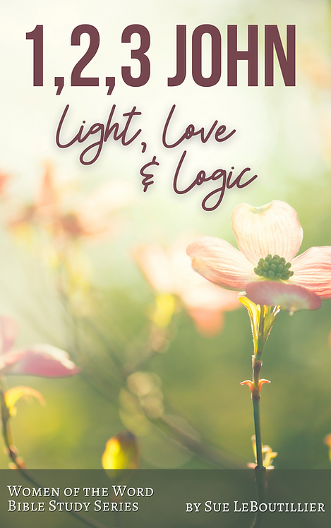 1, 2, 3 John • Light, Love and Logic