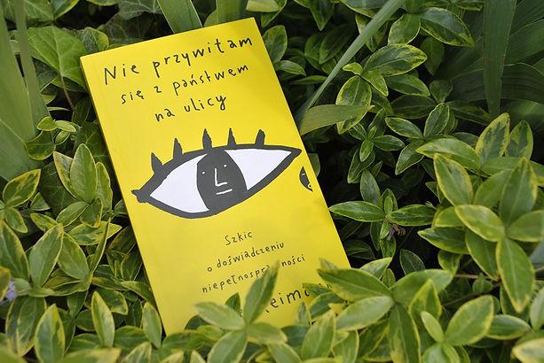 ,,Nie przywitam się z państwem na ulicy. Szkic o doświadczaniu niepełnosprawności'' Recenzja książki Marii Reimann