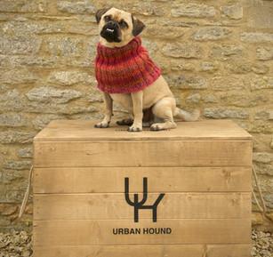 Urban hound dog accessories