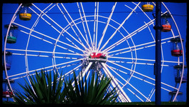 Barry Ferris Wheel