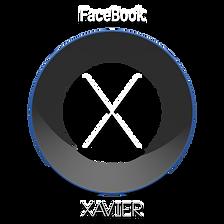 Web X.png
