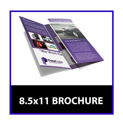 8.5x11 Brochure