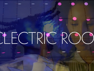 Eclectric Roots, Brussels November 1