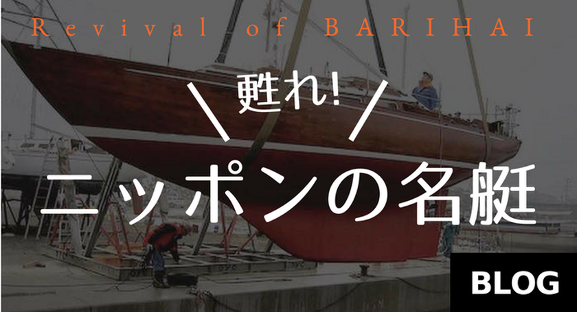 https://www.energy.raycreation.co.jp/barihai