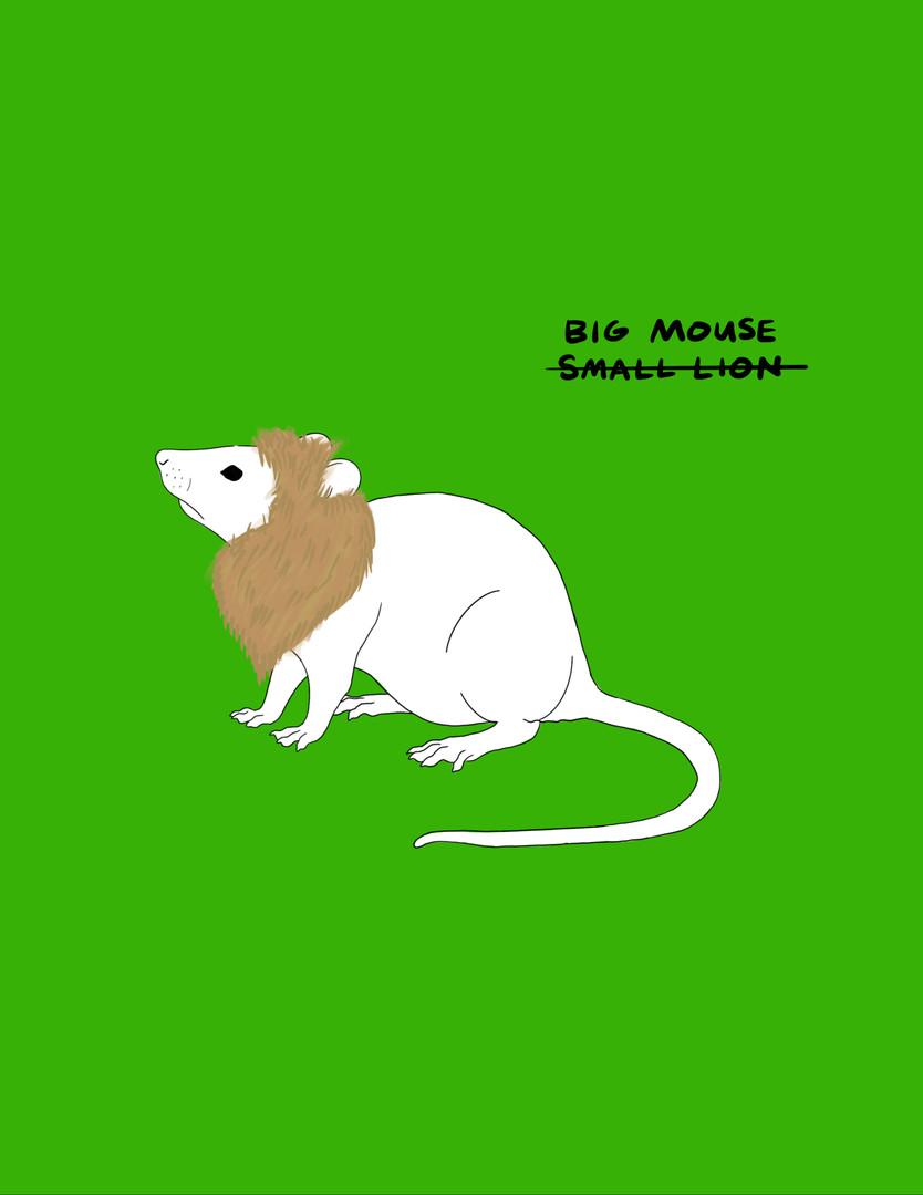 bigmouse.mp4