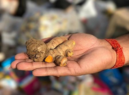 5 Benefits of Turmeric, Ayurveda's Golden Botanical