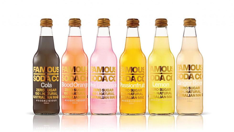 Famous Soda Co Organic Soft Drink