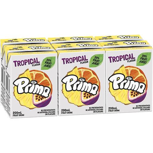 Prima Tropical 6 Pack