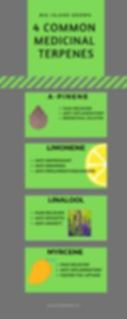 4 common medicinal terpenes (1).png
