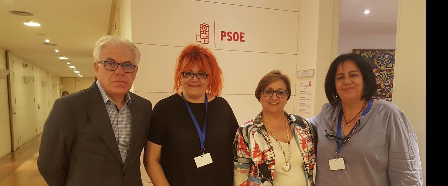 COMISION SANIDAD PSOE