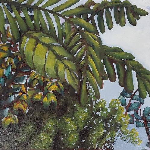 Tropical Plant Life III