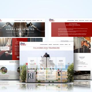 Site Internet Haras des Vénètes