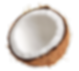 Saru-Organik-Monoi-de-Tahiti-Body-Oil-Vucut-Yagi-Coconut