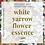 Thumbnail: WHITE YARROW FLOWER ESSENCE 10ml