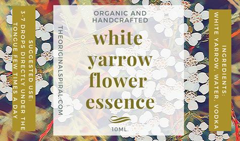 WHITE YARROW FLOWER ESSENCE 10ml