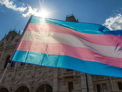 Kedden szavazott a parlament transz testvéreinkről