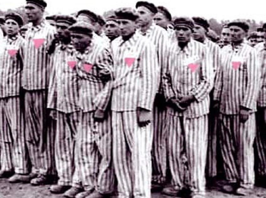 Meleg holokauszt