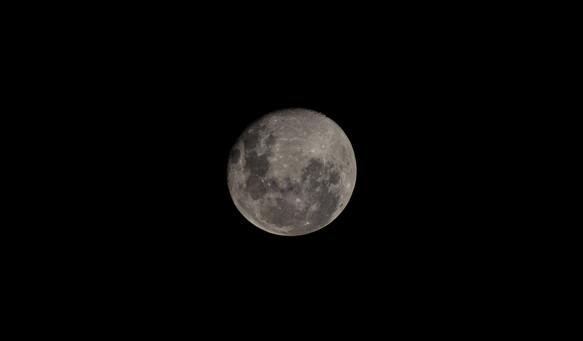 Lua 300mm.jpg