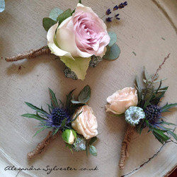 Rose and thistle buttonholes