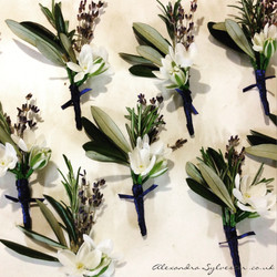 White lavender buttonholes