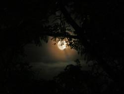 moonhidden.jpg
