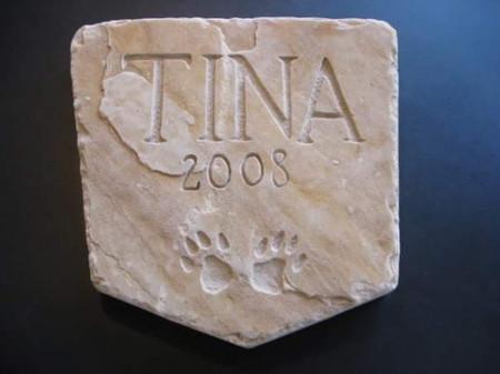 TINA 2008