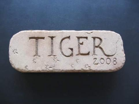 Tiger 2008