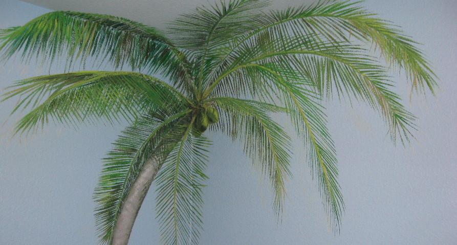 Corner palm tree overhead...