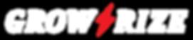 GROW RIZE, グローライズ,株式会社グローライズ,苫小牧市,中古車販売店,中古車,北海道,車販売,中古車販売,grow rize,苫小牧,車検,整備,板金,ドレスアップ