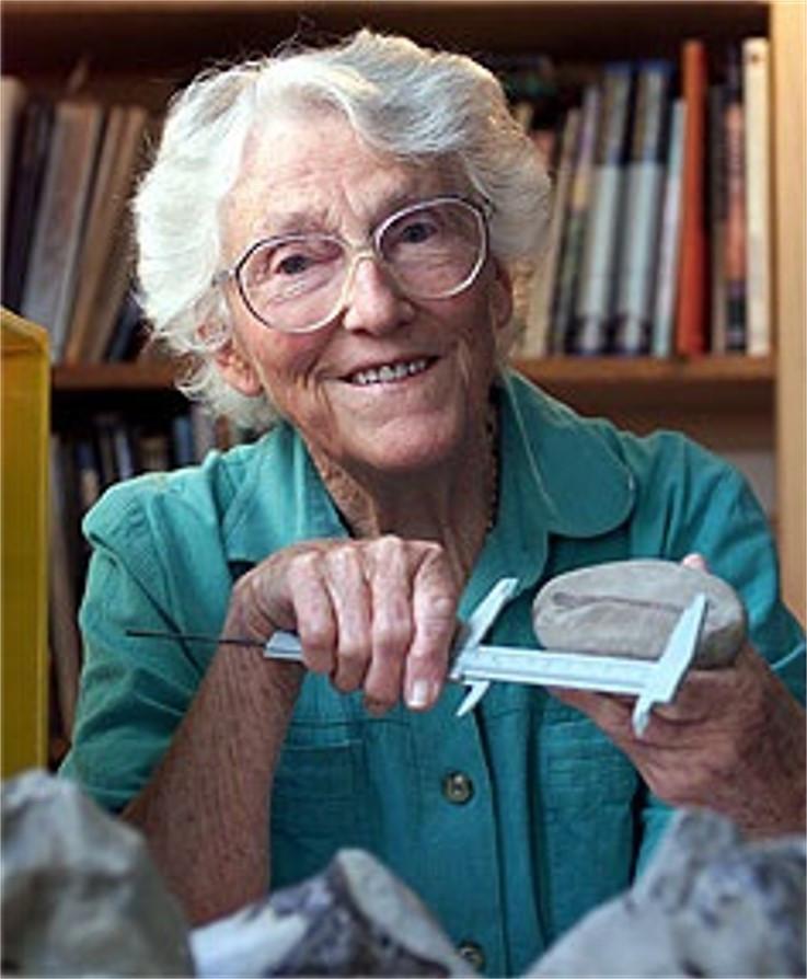 Joan Wiffen measuring a fossil