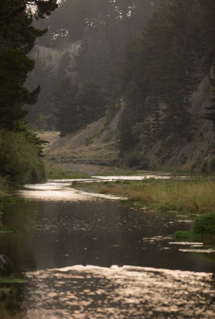 Maraetotara River