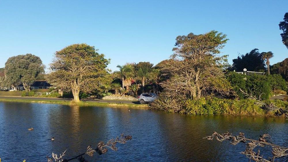 Te Awanga Lagoon