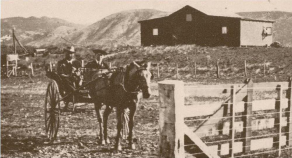 Joseph Vidal surveying his land