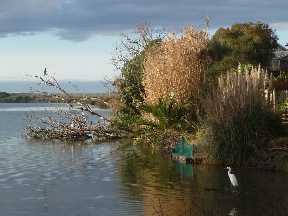Haumoana Pond