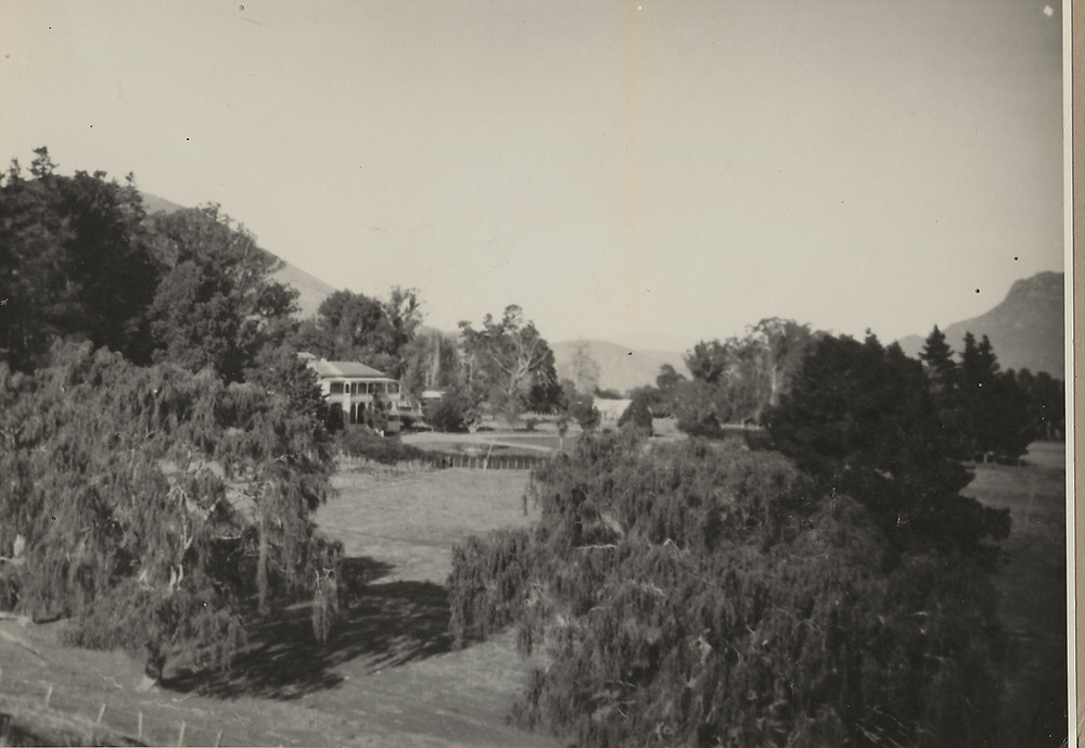 Tuki Tuki Landscape 1927 - homestead in background