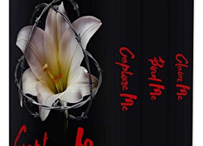 Capture Me: The Trilogy by Anna Zaires