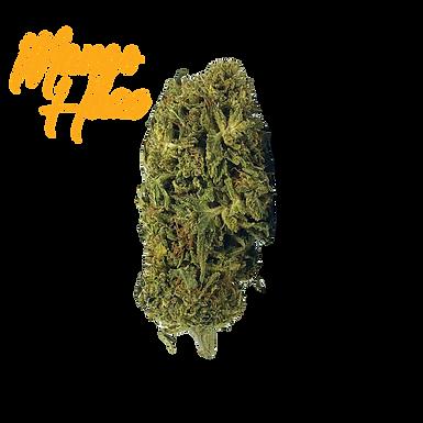 Mango Haze CBD Flower