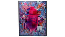 Dominic Vonbern Pinkish