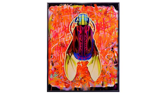 Dominic Vonbern Orange passion