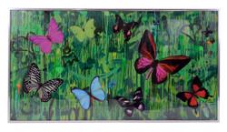 Dominic Vonbern Butterflies artwork gree