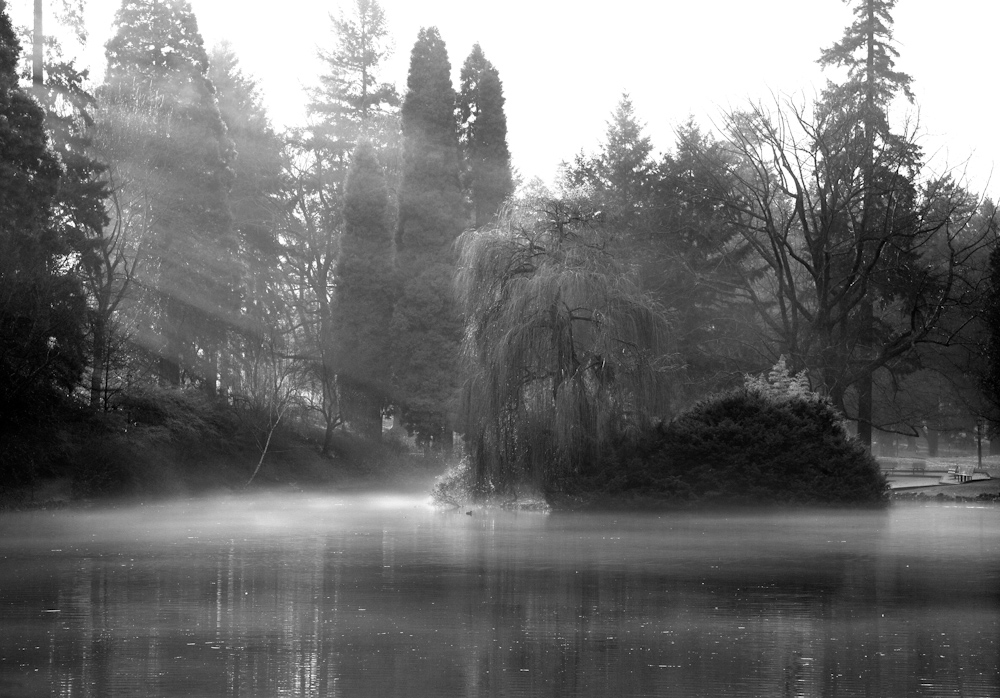 WATER_ZQ1A8282bw.jpg