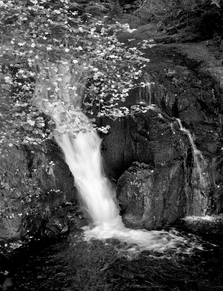WATER_3C2D1472bw.jpg