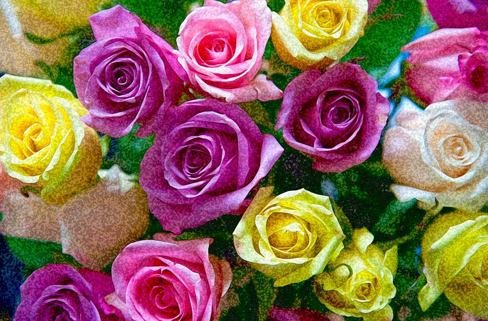 WATERCOLOR_3C2D7956watercolor.jpg