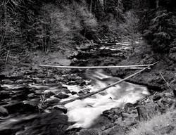 WATER_river 11x14.jpg