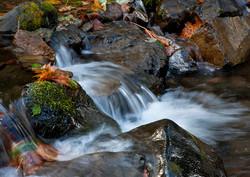 WATER_3C2D0180.jpg