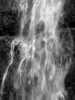 WATER_3C2D1431bw.jpg