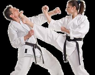pngkey.com-martial-arts-png-1609552.png