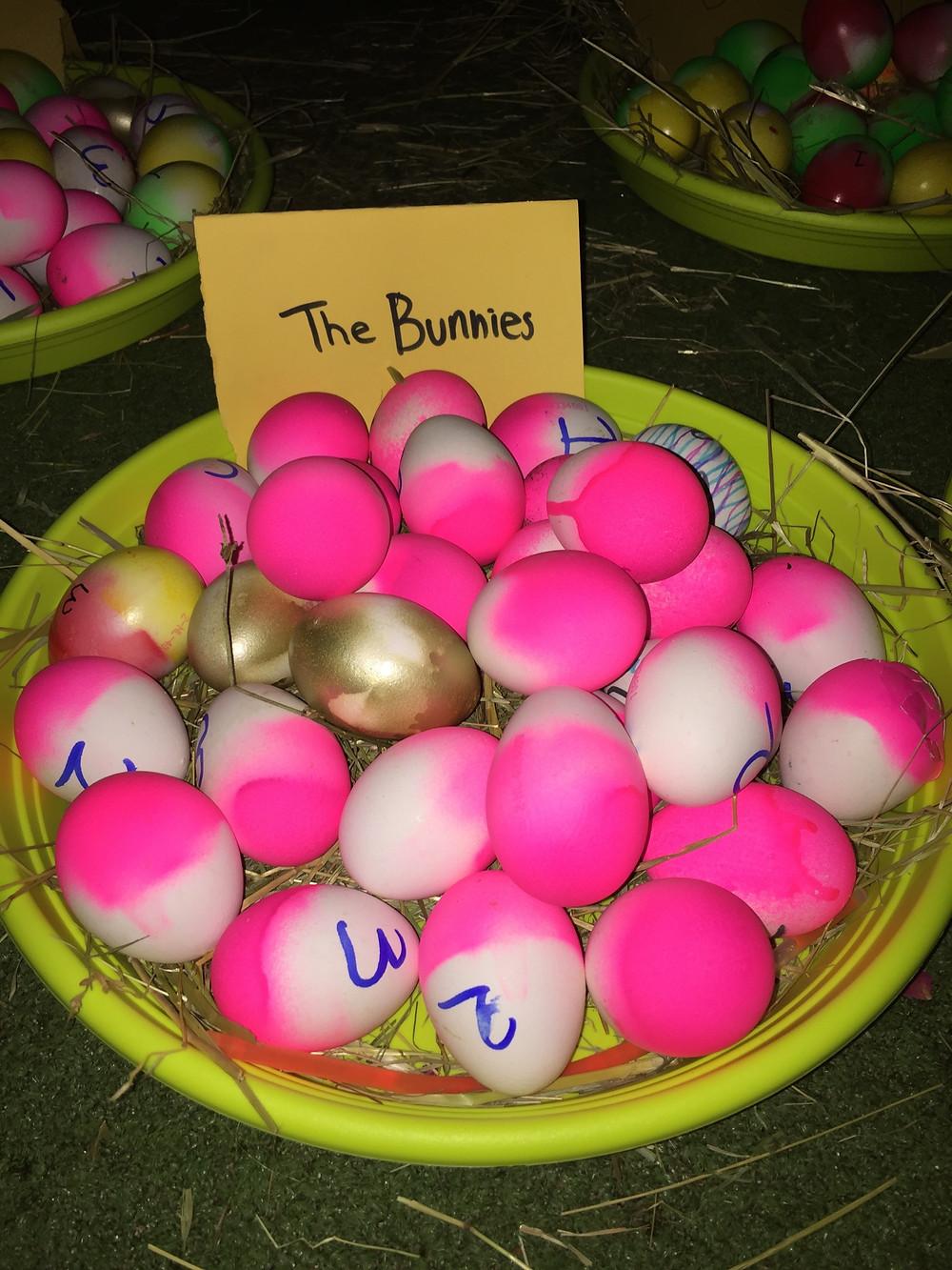 Het konijnen-hol van team 'The Bunnies'