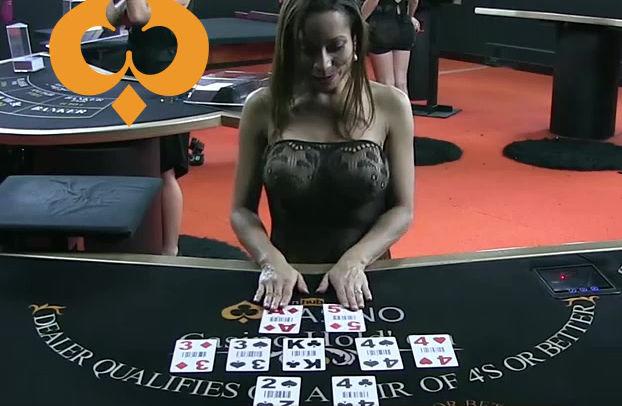 Playhub Erotic Casino